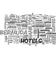 bermuda hotels text word cloud concept vector image vector image