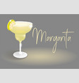cocktail drink fresh margarita vector image