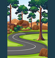 curve road in the woods vector image vector image
