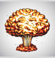 nuclear explosion atomic bomb mushroom cloud vector image