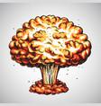 nuclear explosion atomic bomb mushroom cloud