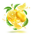 realistic lemon splash flow with leaves vector image vector image