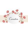 Vintage carnations background vector image