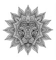 outline lion mandala vector image