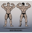 Bodybuilder Position the front and rear vector image