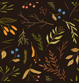 autumn season botany flat seamless pattern vector image