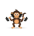 cute chimpanzee in gym with dumbbells sport little vector image vector image