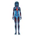 Human circulatory system vector image vector image
