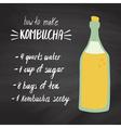 kombucha recipe vector image
