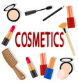 set of cosmetics on a white the view from the top vector image