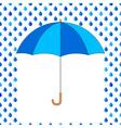 Umbrella and drops vector image