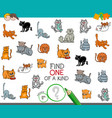 find one of a kind picture with cat character vector image vector image