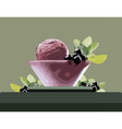 Ice Cream Bowl vector image vector image