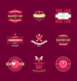 Set Of Vintage Happy Valentines Day Badges or vector image