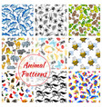 animal bird fish and insect seamless pattern vector image vector image