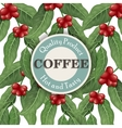 coffee tree design template vector image vector image