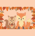 cute animal foliage hello autumn vector image