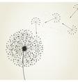 dandelion seeds vector image vector image