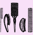 different combs vector image vector image