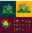 houseplants indoor and office vector image