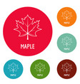 maple leaf icons circle set vector image vector image