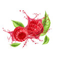 realistic raspberry splash flow with leaves vector image