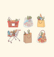 shopping bags and grocery purchases concept vector image