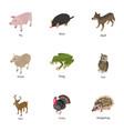 animal of the world icons set isometric style vector image