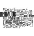 bermuda text word cloud concept vector image vector image