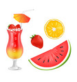 cocktail and fruits collection vector image