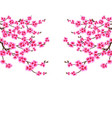 sakura card branched branches of cherry blossom vector image vector image