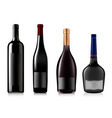 set of different bottles vect vector image vector image