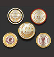 vip silver and gold label collection vector image
