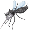 Wild mosquito in black color vector image vector image