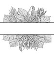 banner border of tropical jungle palm leaves vector image