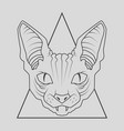 cat face design vector image vector image