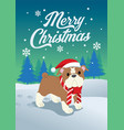 cute bulldog of christmas vector image vector image