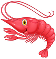 Cute shrimp cartoon vector image vector image