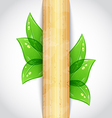 Eco friendly background with green leaves wooden vector image vector image