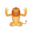 lion yoga wild animal yogi isolated beast vector image vector image