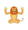 lion yoga wild animal yogi isolated beast vector image