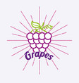 vintage style card fresh organic natural grapes vector image