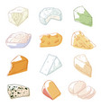 cheese sketch set vector image vector image