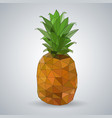 hipster geometric polygonal fruit pineapple vector image