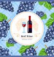 red wine label black grape seamless pattern vector image