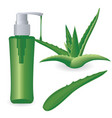 aloe vera plant and a bottle of gel vector image vector image