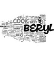 beryl cook s art quirky uk artist text word cloud vector image vector image
