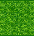 bright green grass seamless pattern vector image