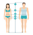 man and women sizes measurements vector image vector image