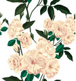 rose seamless pattern2 vector image vector image